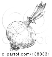 Clipart Of A Sketched Gray Onion Royalty Free Vector Illustration