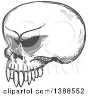 Clipart Of A Sketched Gray Skull Royalty Free Vector Illustration