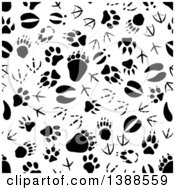 Clipart Of A Seamless Background Pattern Of Black Animal Tracks Royalty Free Vector Illustration
