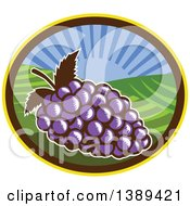 Clipart Of A Retro Woodcut Bunch Of Purple Grapes In An Oval With A Sunrise Or Sunset Royalty Free Vector Illustration