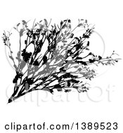 Clipart Of A Black Silhouetted Shrub Royalty Free Vector Illustration by dero
