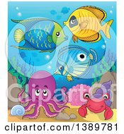 Clipart Of Marine Fish Under The Sea Royalty Free Vector Illustration by visekart