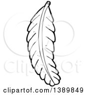 Clipart Of A Cartoon Black And White Lineart Bird Feather Royalty Free Vector Illustration