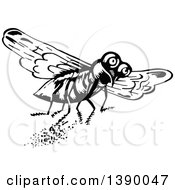 Vintage Black And White Fly