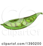Clipart Of A Sketched Pea Pod Royalty Free Vector Illustration by Vector Tradition SM