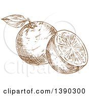 Clipart Of A Brown Sketched Navel Orange Royalty Free Vector Illustration by Vector Tradition SM