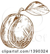 Clipart Of A Brown Sketched Plum Peach Or Apricot Royalty Free Vector Illustration by Vector Tradition SM
