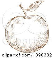 Clipart Of A Brown Sketched Apple Royalty Free Vector Illustration