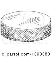 Gray Sketched Hockey Puck
