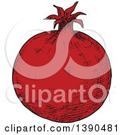 Clipart Of A Sketched Pomegranate Royalty Free Vector Illustration by Vector Tradition SM