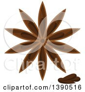 Clipart Of A Culinary Spice Herb Star Anise Royalty Free Vector Illustration