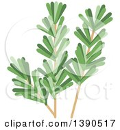 Clipart Of A Culinary Spice Herb Rosemary Royalty Free Vector Illustration