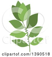 Clipart Of A Culinary Spice Herb Bay Leaf Royalty Free Vector Illustration