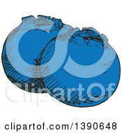Clipart Of Sketched Blueberries Royalty Free Vector Illustration