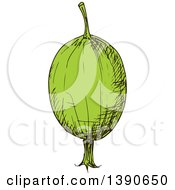 Clipart Of A Sketched Gooseberry Royalty Free Vector Illustration