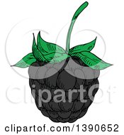 Clipart Of A Sketched Blackberry Royalty Free Vector Illustration