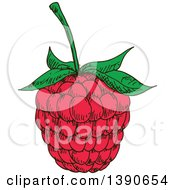 Clipart Of A Sketched Raspberry Royalty Free Vector Illustration by Vector Tradition SM