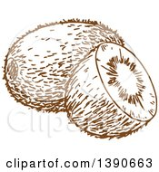 Clipart Of A Brown Sketched Kiwi Fruit Royalty Free Vector Illustration