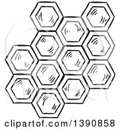 Clipart Of Black And White Sketched Honey Combs Royalty Free Vector Illustration by Vector Tradition SM