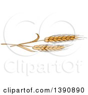 Clipart Of Sketched Wheat Stalks Royalty Free Vector Illustration by Vector Tradition SM