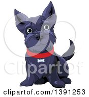 Clipart Of A Cute Black Happy Scottish Terrier Dog Sitting And Wearing A Red Collar Royalty Free Vector Illustration
