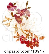 Floral Grunge Background On White