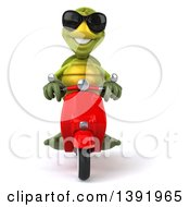 3d Green Tortoise Riding A Scooter On A White Background