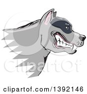 Clipart Of A Tough Snarling Gray Pit Bull Dog Head In Profile Royalty Free Vector Illustration by David Rey