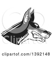 Clipart Of A Woodcut Black And White Tough Snarling Doberman Pinscher Dog Head In Profile Royalty Free Vector Illustration