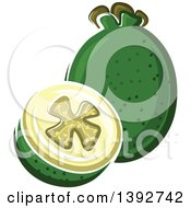 Clipart Of A Feijoa Fruit Or Pineapple Guava Whole And Halved Royalty Free Vector Illustration