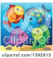 Clipart Of A Group Of Fish Royalty Free Vector Illustration