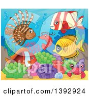 Clipart Of A Shrimp Crab And Group Of Marine Fish Royalty Free Vector Illustration by visekart