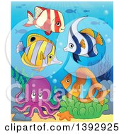 Clipart Of A Group Of Marine Fish And Octopus Royalty Free Vector Illustration
