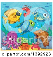 Clipart Of A Group Of Sea Creatures Royalty Free Vector Illustration by visekart