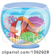 Clipart Of A Clownfish Marine Fish In A Bowl Royalty Free Vector Illustration by visekart