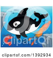 Clipart Of A Killer Whale Orca Shrimp Fish And Squid Royalty Free Vector Illustration by visekart