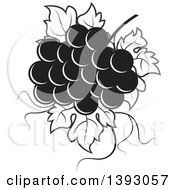 Clipart Of A Black And White Bunch Of Grapes Royalty Free Vector Illustration by Lal Perera
