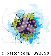 Clipart Of A Bunch Of Purple Grapes Over Blue Paint Strokes Royalty Free Vector Illustration by Lal Perera