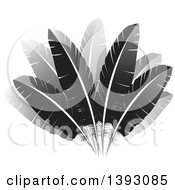 Clipart Of A Fan Of Feathers Royalty Free Vector Illustration