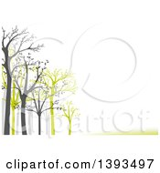 Clipart Of A Background Of Gray And Green Leafing Trees And Lines With Text Space On White Royalty Free Vector Illustration