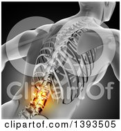 3d Anatomical Man With Glowing Spine Or Back Pain And Visible Skeleton On Gray