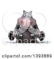 Clipart Of A 3d Henry Hippo Character Working Out With Dumbbells On A White Background Royalty Free Illustration by Julos