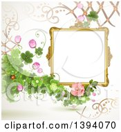 Blank Ornate Picture Frame With Text Space Clovers And Roses