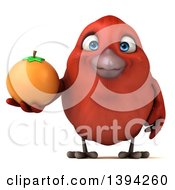 Clipart Of A 3d Red Bird Holding An Orange On A White Background Royalty Free Illustration