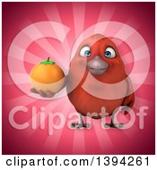 Clipart Of A 3d Red Bird Holding An Orange On A Pink Background Royalty Free Illustration