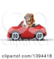3d Male Lion Driving A Convertible Car On A White Background