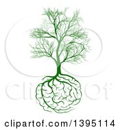 Green Tree With Brain Roots And Bare Branches Symbolizing Memory Loss