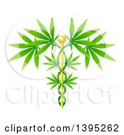 Clipart Of A Medical Marijuana Design With A Cannabis Plant Growing On A Gold Caduceus Royalty Free Vector Illustration by AtStockIllustration
