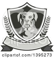 Clipart Of A Retro Rottweiler Head In A Shield With Laurel Branches Over A Blank Banner Royalty Free Vector Illustration by patrimonio