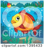 Clipart Of A Freshwater Fish Looking At A Hook And Bobber Royalty Free Vector Illustration by visekart